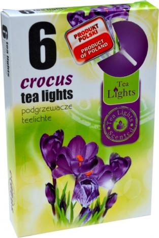 Smaržīgās tējas sveces (6gab.) – KROKUS