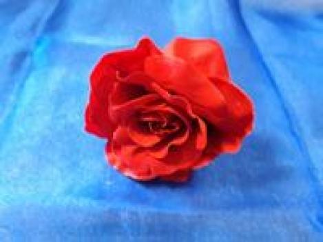 Роза бархатная (голова) A65W73